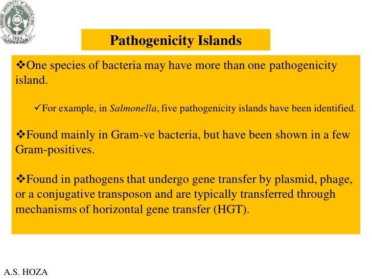 Pathogenicity Islands  One species of bacteria may have more than one pathogenicity  island.      For example, in Salmon...