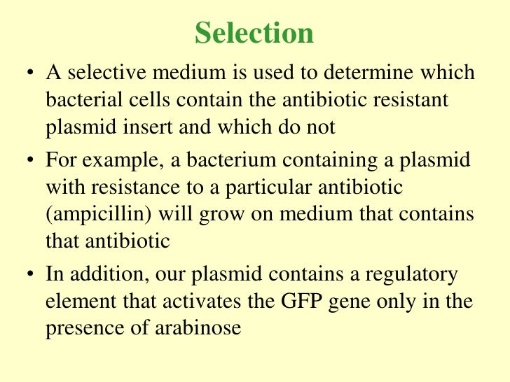 Selection • A selective medium is used to determine which   bacterial cells contain the antibiotic resistant   plasmid ins...