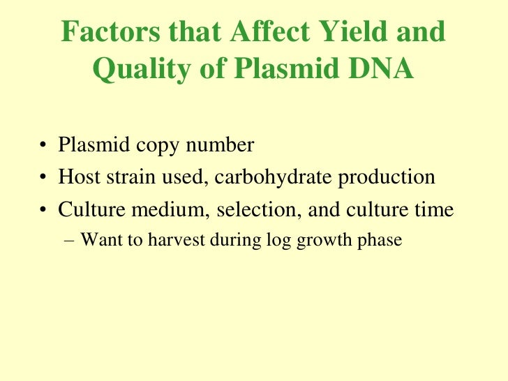Factors that Affect Yield and     Quality of Plasmid DNA  • Plasmid copy number • Host strain used, carbohydrate productio...
