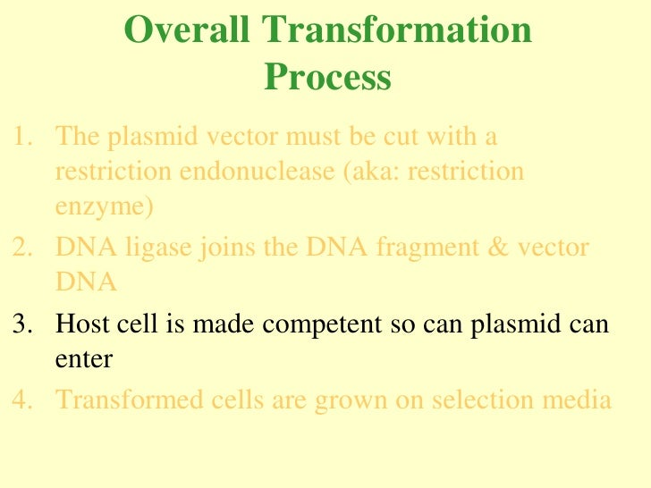Overall Transformation                  Process 1. The plasmid vector must be cut with a    restriction endonuclease (aka:...