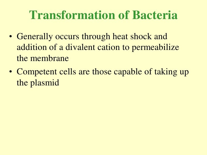 Transformation of Bacteria • Generally occurs through heat shock and   addition of a divalent cation to permeabilize   the...