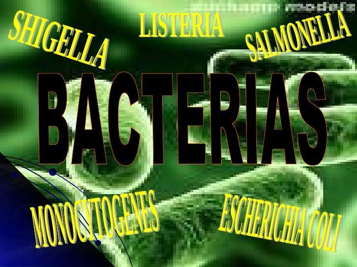BACTERIAS ESCHERICHIA COLI SALMONELLA SHIGELLA LISTERIA MONOCYTOGENES