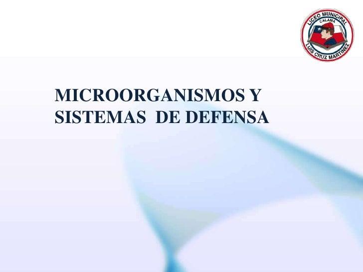 MICROORGANISMOS Y<br />SISTEMAS  DE DEFENSA<br />