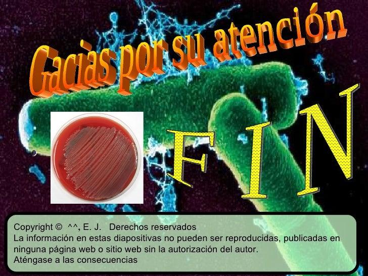 Copyright ©  ^^,  E. J.  Derechos reservados La información en estas diapositivas no pueden ser reproducidas, publicadas e...