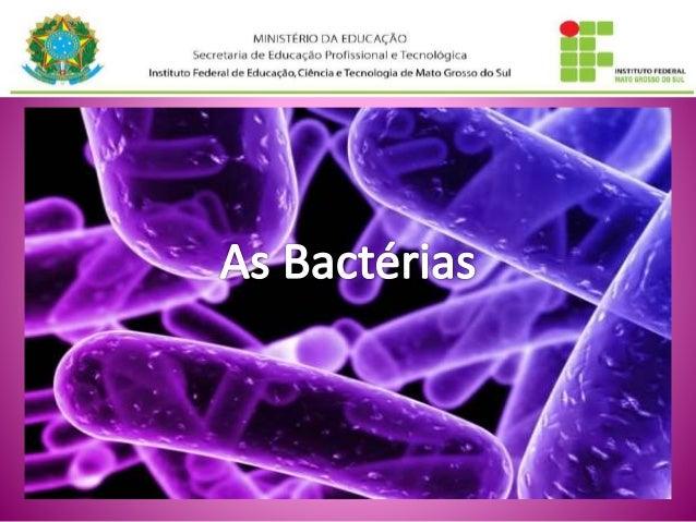 Divisão do Reino Monera: (eluaine)  • Filo Schizophyta (bactérias)  • Filo Cyanophyta (Cianobactérias ou  cianofíceas ou p...