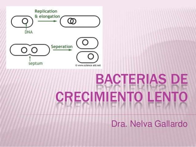 BACTERIAS DE CRECIMIENTO LENTO Dra. Nelva Gallardo