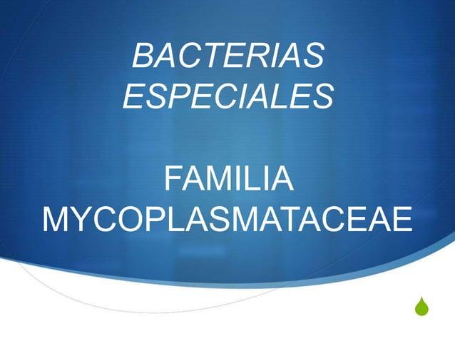 BACTERIAS   ESPECIALES     FAMILIAMYCOPLASMATACEAE                S