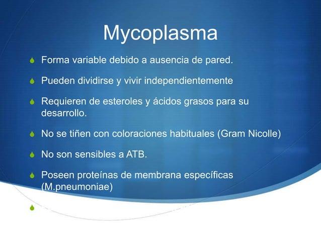MycoplasmaS Forma variable debido a ausencia de pared.S Pueden dividirse y vivir independientementeS Requieren de esterole...