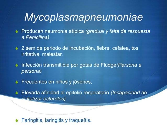 MycoplasmapneumoniaeS Producen neumonía atípica (gradual y falta de respuesta   a Penicilina)S 2 sem de periodo de incubac...