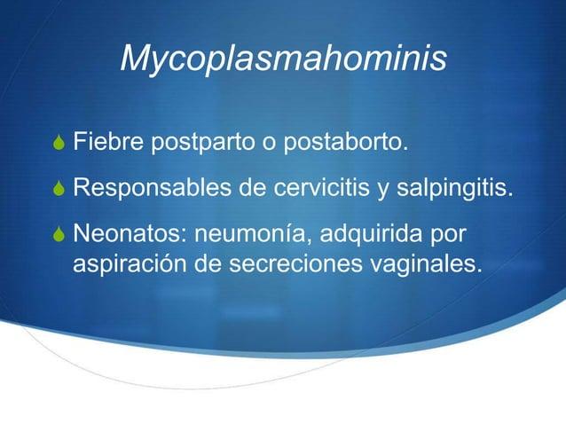 MycoplasmahominisS Fiebre postparto o postaborto.S Responsables de cervicitis y salpingitis.S Neonatos: neumonía, adquirid...