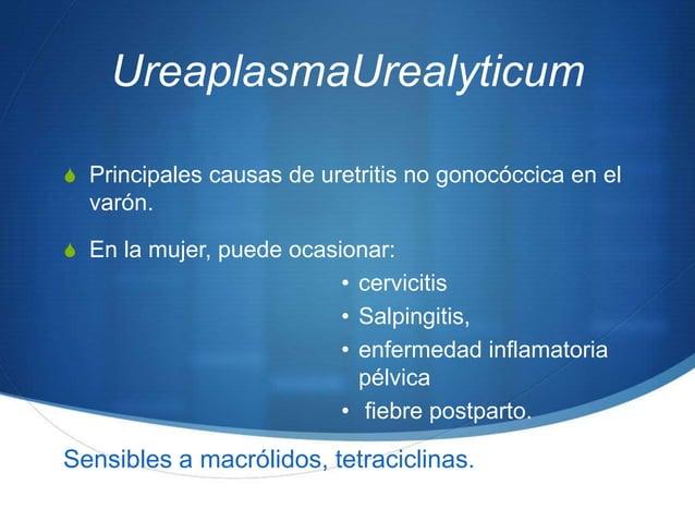 UreaplasmaUrealyticumS Principales causas de uretritis no gonocóccica en el  varón.S En la mujer, puede ocasionar:        ...