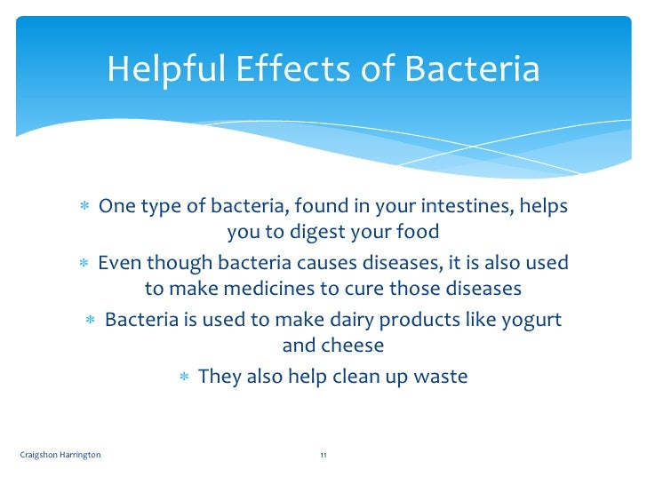 bacteria friend or foe The main idea of the article, friend or foe is to inform the general public that bacteria are not always harmful for example in the article it said (in a mutualism relationship, both the bacteria and the host receive their benefits bacteria friend or foe.