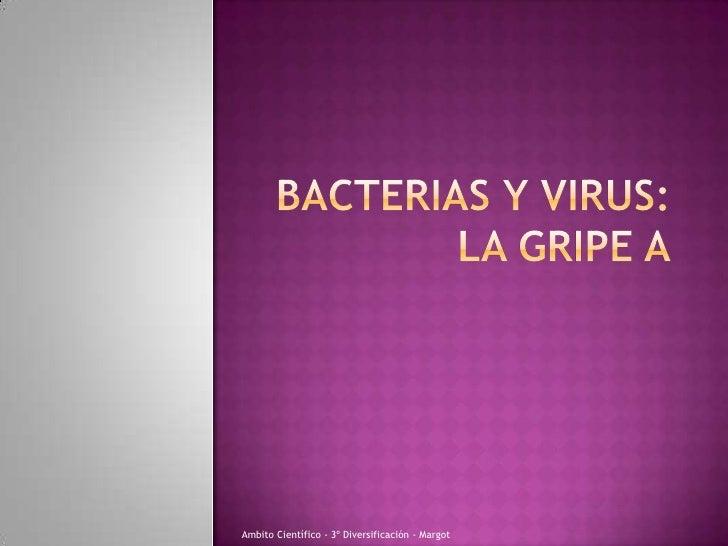 Bacterias y virus:la gripe a<br />Ambito Científico - 3º Diversificación - Margot<br />