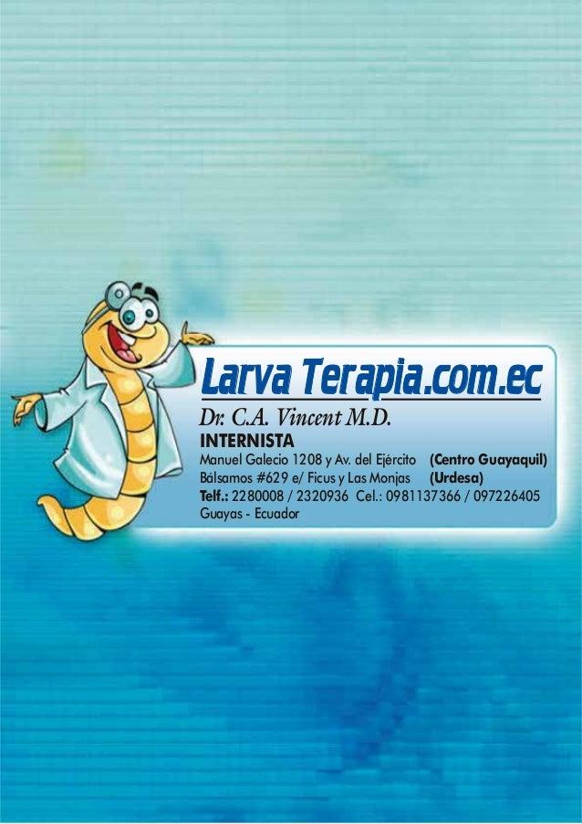 Larva Terapia.com.ecDr. C.A. Vincent M.D.INTERNISTAManuel Galecio 1208 y Av. del Ejército (Centro Guayaquil)Bálsamos #629 ...
