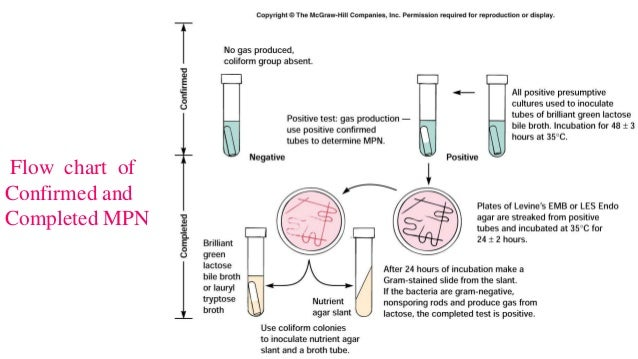 Private Drinking Water Bacteriological Testing