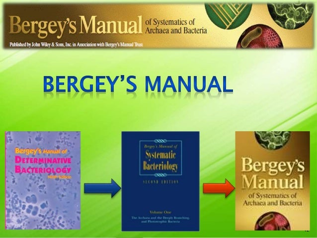 classification of bacteria according to bergey manual of determinative bacteriology