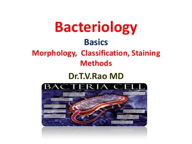 Bacteriology Basics Morphology, Classification, Staining Methods  Dr.T.V.Rao MD