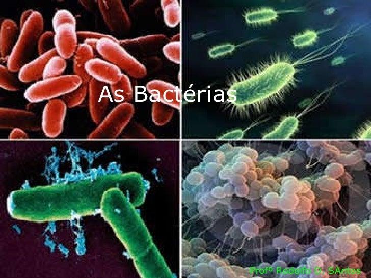 As Bactérias Profº Rodolfo D. SAntos
