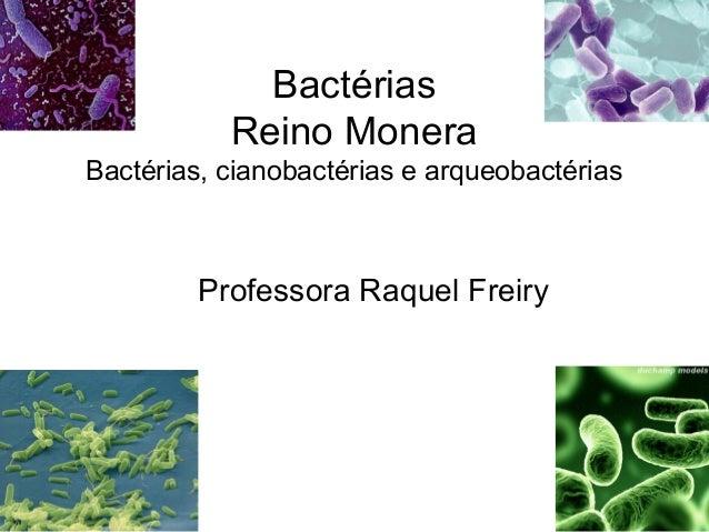 Bactérias Reino Monera Bactérias, cianobactérias e arqueobactérias Professora Raquel Freiry
