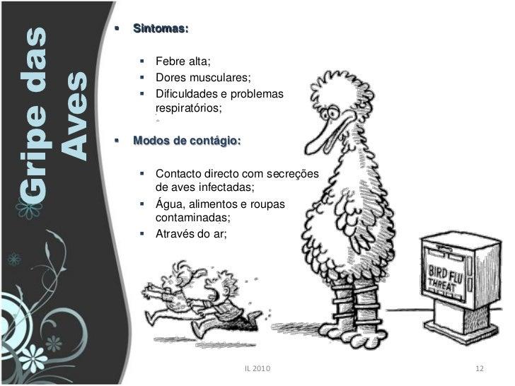    Sintomas: Gripe das                   Febre alta;   Aves            Dores musculares;                   Dificuldade...