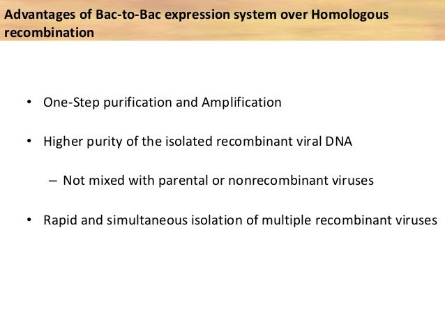 • Safety – baculoviruses are essentially nonpand plantsathogenic to mammals • Ease of scale up – Reproducibly scaled up fo...