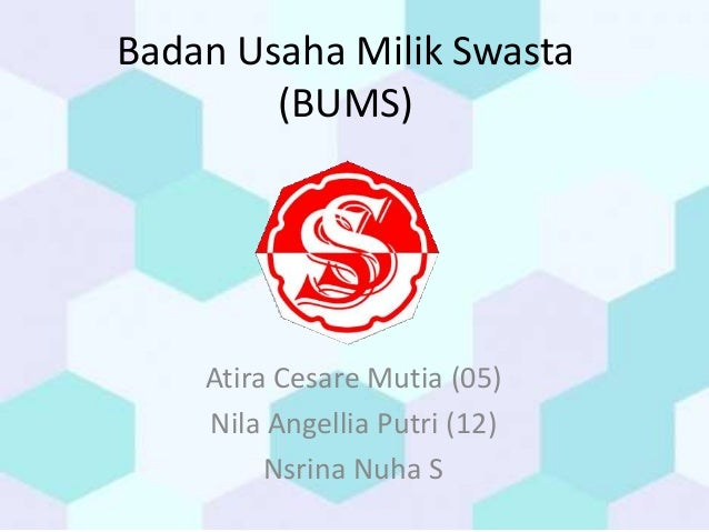 Badan Usaha Milik Swasta (BUMS) Atira Cesare Mutia (05) Nila Angellia Putri (12) Nsrina Nuha S