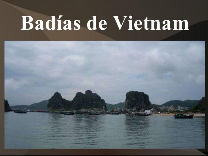 Badías de Vietnam