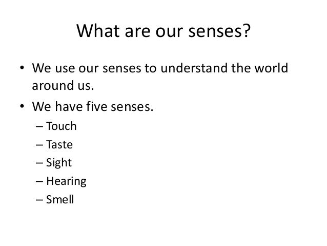 What are our senses? • We use our senses to understand the world around us. • We have five senses. – Touch – Taste – Sight...