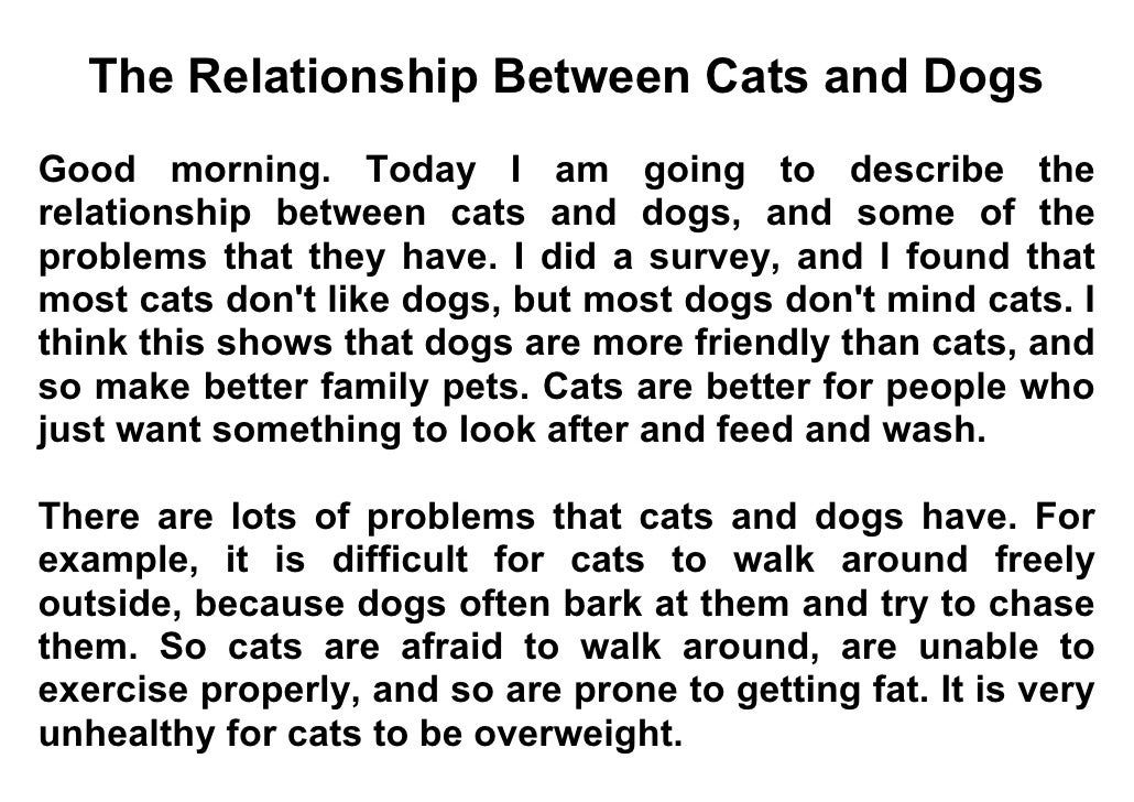 The Relationship Between Cats and Dogs Good morning. Today I am going to describe the relationship between cats and dogs, ...