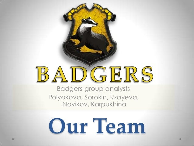 Badgers-group analysts Polyakova, Sorokin, Rzayeva, Novikov, Karpukhina  Our Team