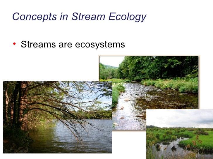 Concepts in Stream Ecology <ul><li>Streams are ecosystems </li></ul>