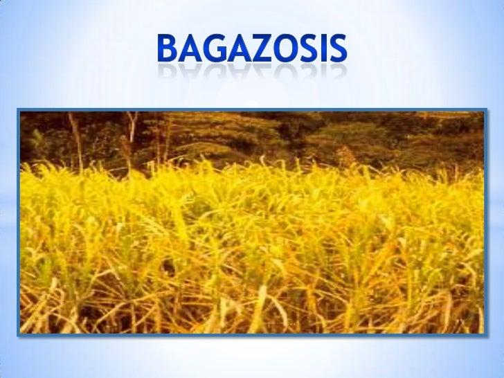 bagazosis<br />