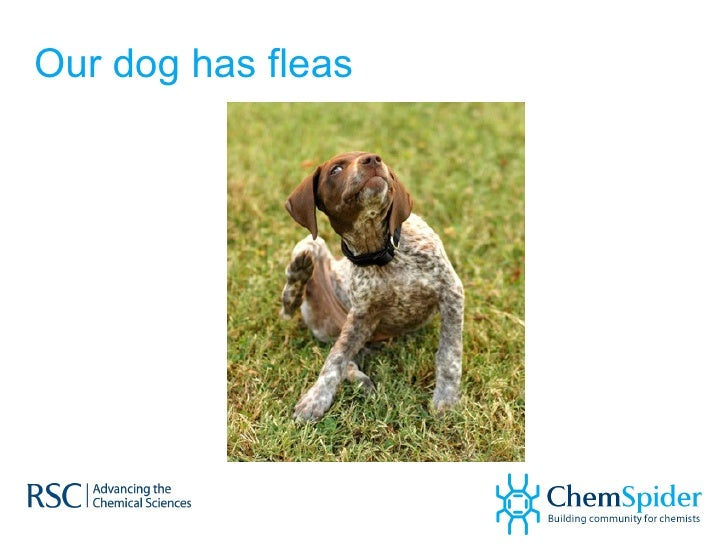 ChemSpider – Is This The Future of Linked Chemistry on the Internet? Slide 2