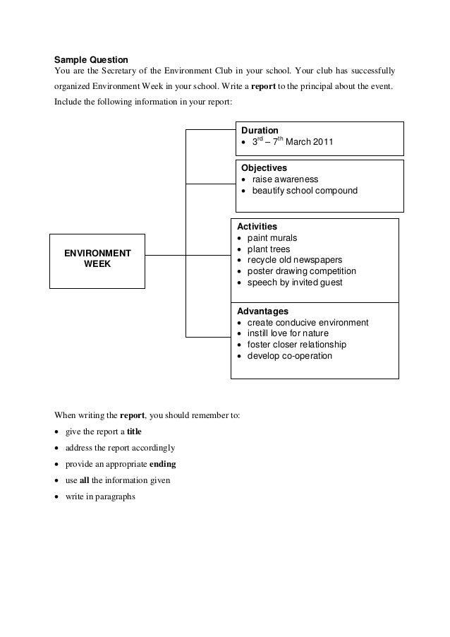 Essay report environment week