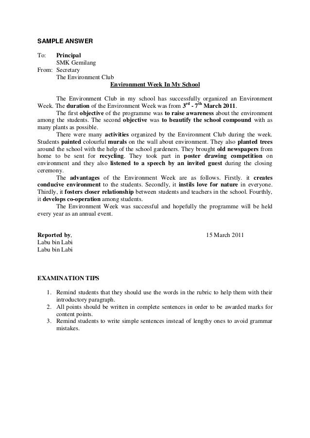 essay report about environment week