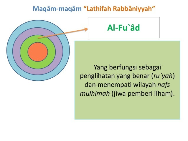 """Maqâm-maqâm """"Lathifah Rabbâniyyah"""" Al-Fu`âd Yang berfungsi sebagai penglihatan yang benar (ru`yah) dan menempati wilayah n..."""