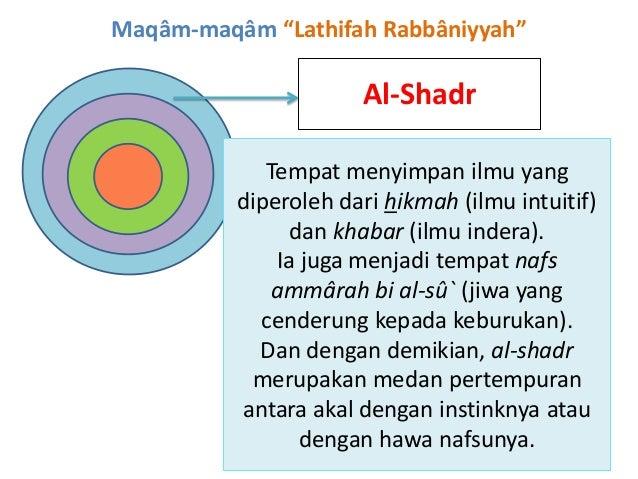 """Maqâm-maqâm """"Lathifah Rabbâniyyah"""" Al-Shadr Tempat menyimpan ilmu yang diperoleh dari hikmah (ilmu intuitif) dan khabar (i..."""