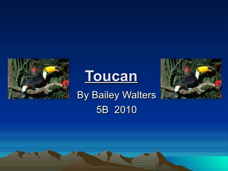 Toucan By Bailey Walters 5B  2010
