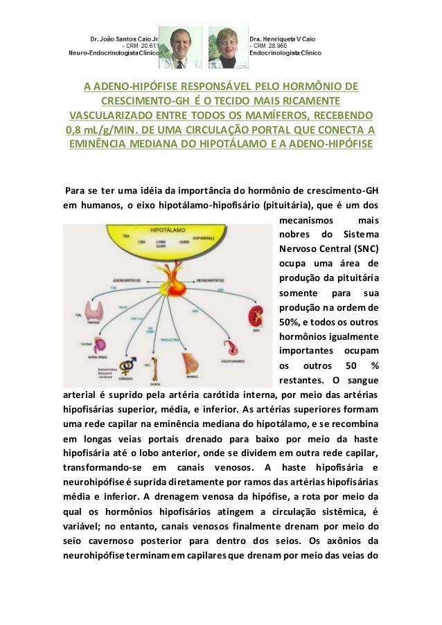 A ADENO-HIPÓFISE RESPONSÁVEL PELO HORMÔNIO DE CRESCIMENTO-GH É O TECIDO MAIS RICAMENTE VASCULARIZADO ENTRE TODOS OS MAMÍFE...