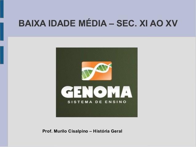 BAIXA IDADE MÉDIA – SEC. XI AO XV Prof. Murilo Cisalpino – História Geral