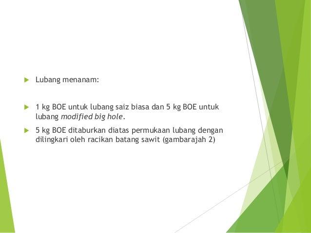  Gantian baja kimia sawit matang:  Satu kampit (20 kg) BOE untuk menggantikan 2 kg baja kimia untuk setiap dua pokok dal...