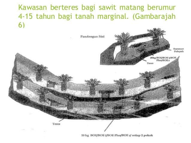 Baja Organik Espek  Pengurusan sisa buangan kilang kelapa sawit yang lebih efektif dan menjimatkan kos.  Penggunaan semu...