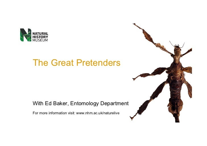 The Great Pretenders With  Ed Baker , Entomology Department For more information visit:  www.nhm.ac.uk/naturelive