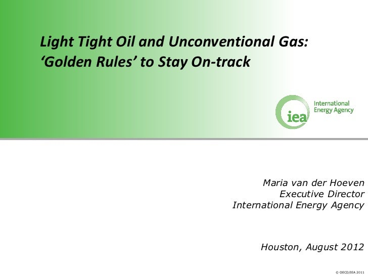 Light Tight Oil and Unconventional Gas:'Golden Rules' to Stay On-track                                 Maria van der Hoeve...