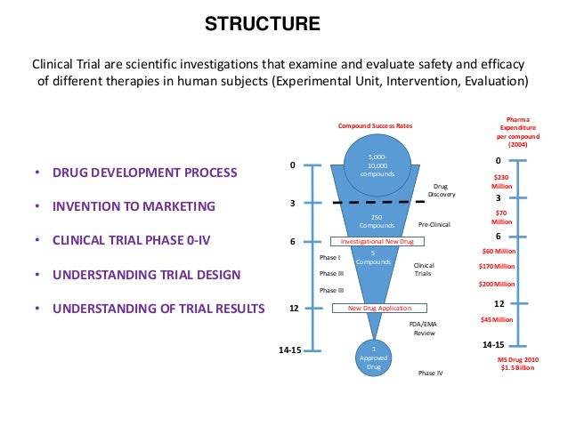 Phases in clinical trial.