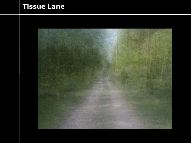 Tissue Lane<br />