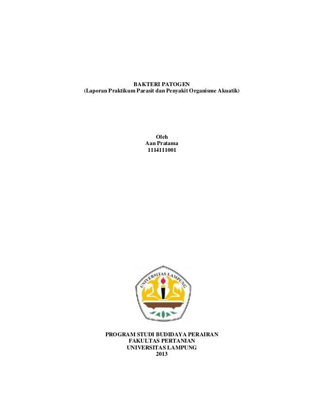 BAKTERI PATOGEN (Laporan Praktikum Parasit dan Penyakit Organisme Akuatik) Oleh Aan Pratama 1114111001 PROGRAM STUDI BUDID...