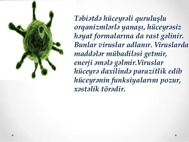 QİÇS virusu  Tütün mozaikası virusu  Qrip virusu
