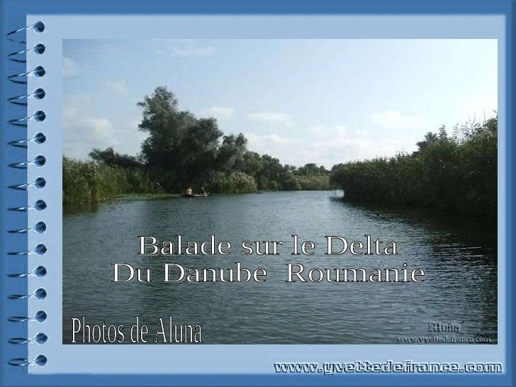 Balade sur le Delta Du Danube  Roumanie Photos de Aluna