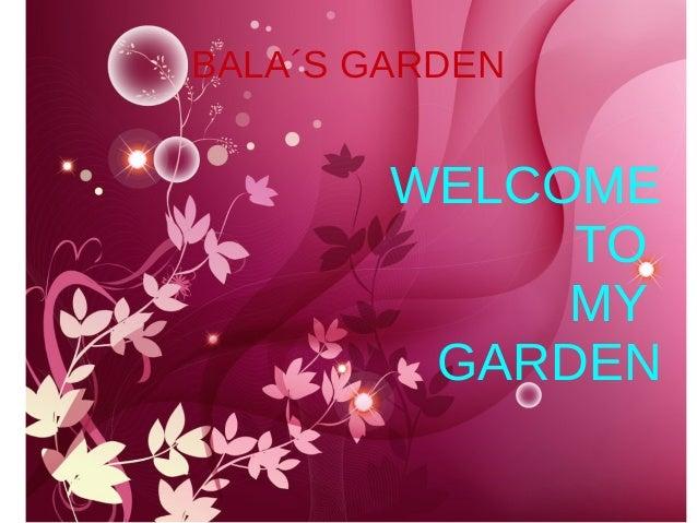 BALA´S GARDEN WELCOME TO MY GARDEN